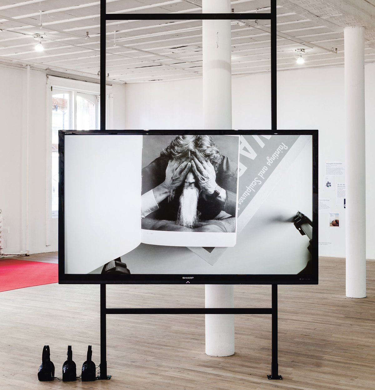 Rosebud, 2013, video. Installation view. Courtesy: James Richards and Rodeo, London